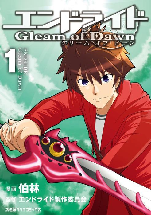 エンドライド Gleam of Dawn (1) 表紙