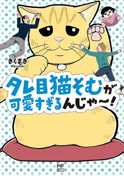 タレ目猫そむが可愛すぎるんじゃ~!