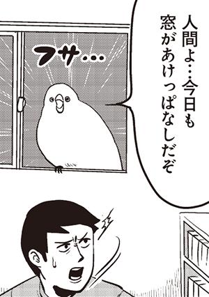 フサみいっぱいの『チュンまんが』1巻、好評発売中!! フサフサの鳥・チュンにもう癒やされっぱなし!!