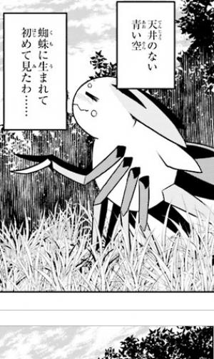 第39話その2 蜘蛛ですが、なにか?